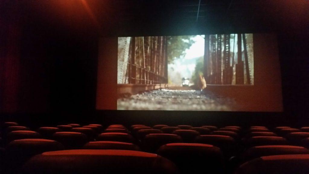 Entourage Movie in Ashville