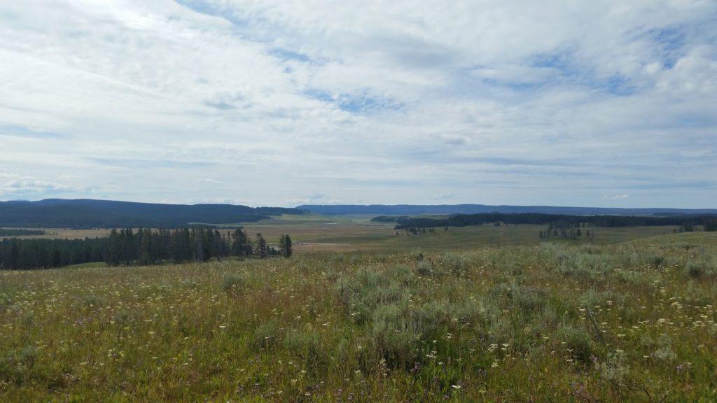 Yellowstone walk