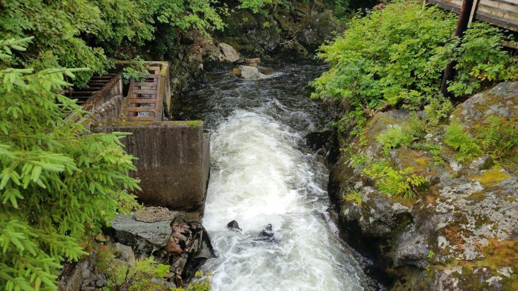 Trout river Ketchikan