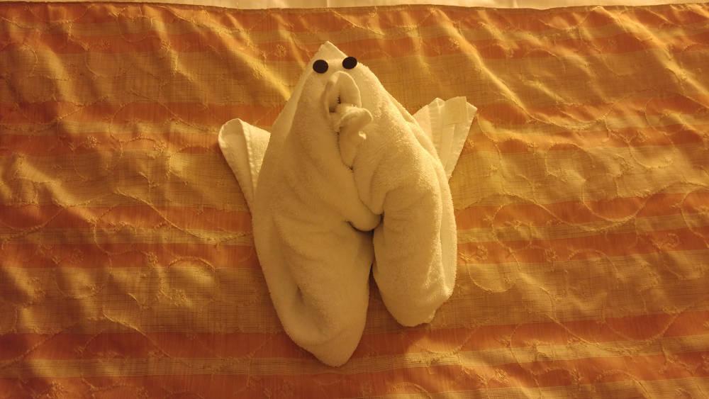 Towel teddy