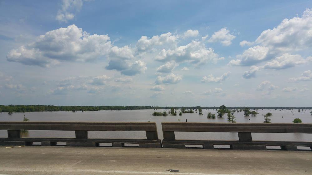 Swamp bridge in Louisiana