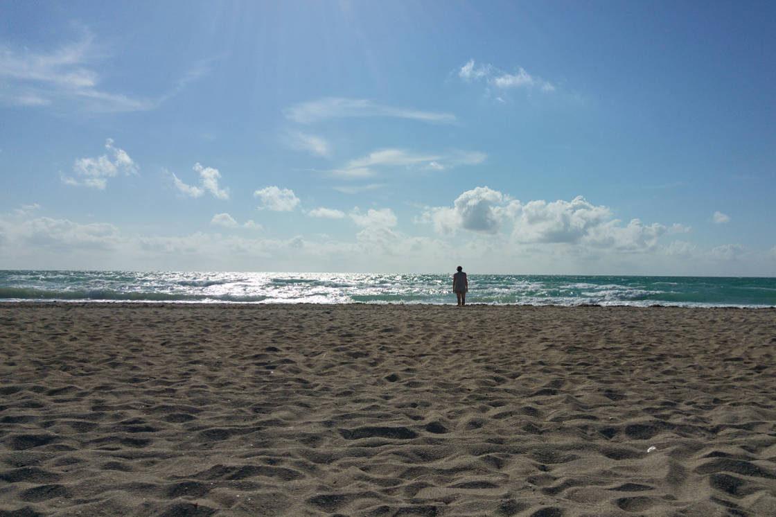 Linnie Miami beach