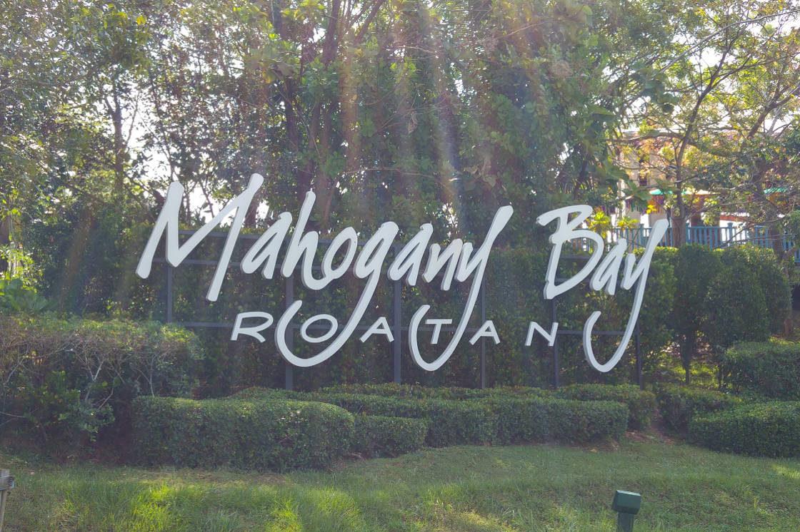 Mahogany Bay header