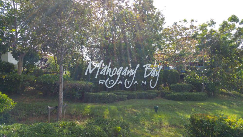 Welcome to Mahogany Bay