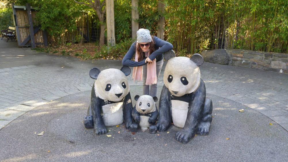 Linda pandas
