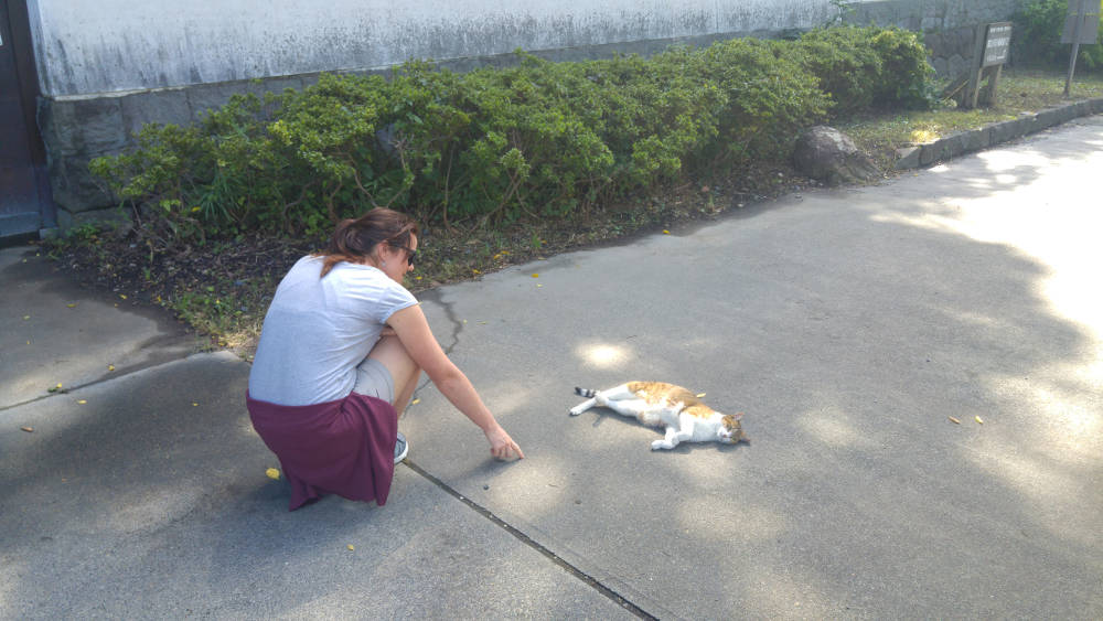 Linda Tokyo cat