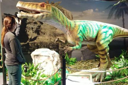 Linda dinosaur