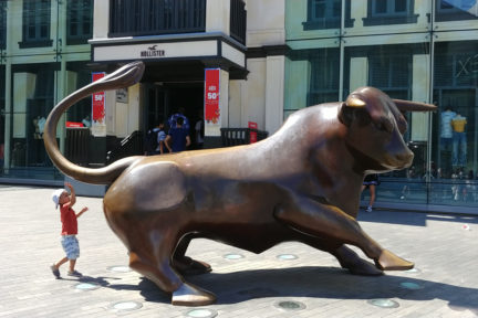 Birmingham Bull