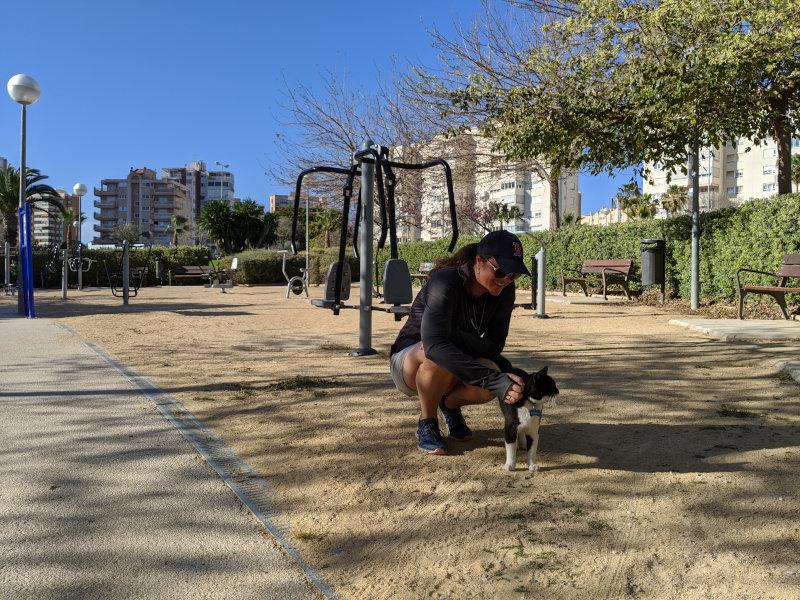 Linnie Kyro park